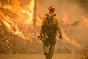 Wildfire.jpg